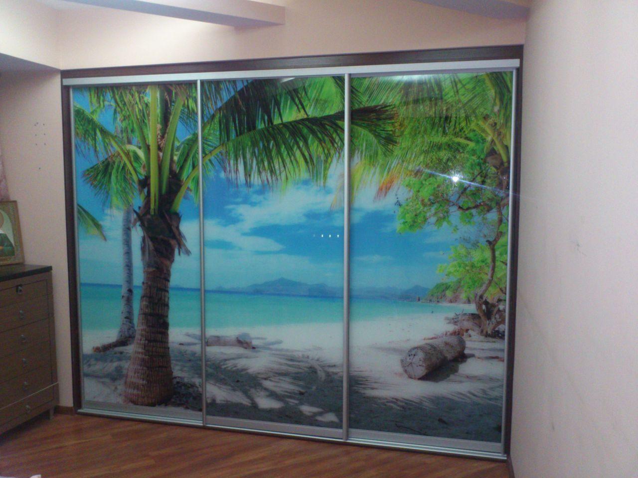 Фото шкафы купе с пальмой стекло 4